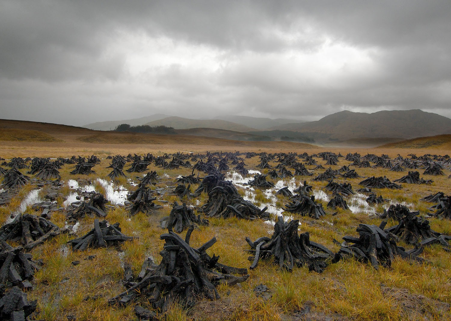 Barry Andersen, Peat, Storm, Connemara, Ireland, 2004. Digital Photograph, 10 x 12½ to 12 x 18 inches. Courtesy of the artist